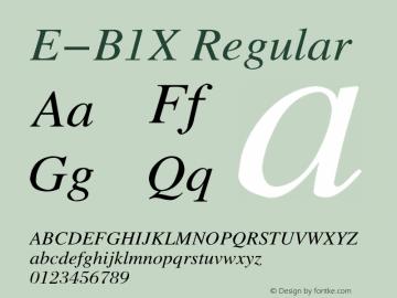 E-B1X