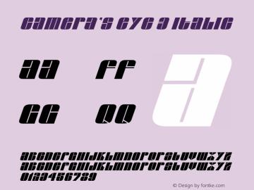 Camera's Eye 3