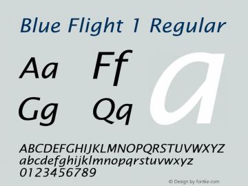 Blue Flight 1