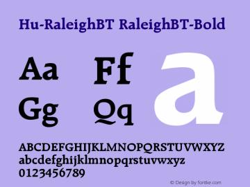 Hu-RaleighBT
