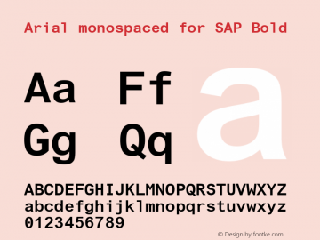 arial monospaced for sap font