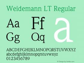Weidemann LT