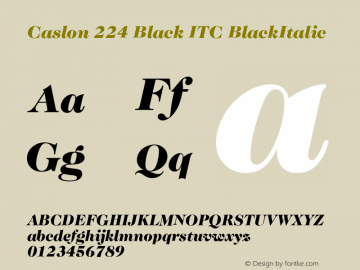 Caslon 224 Black ITC