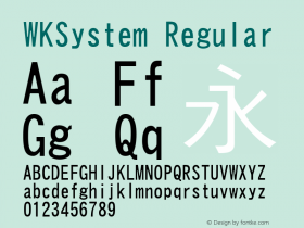 WKSystem