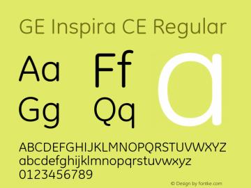 GE Inspira CE