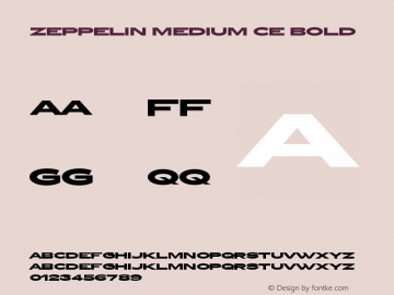 Zeppelin Medium CE