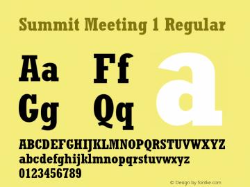 Summit Meeting 1