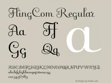 FlingCom