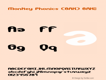 Monkey Phonics (BRK)