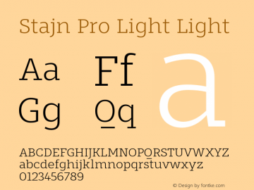 Stajn Pro Light