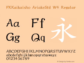 FKKaikaisho AriakeStd W4