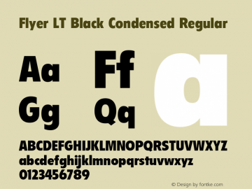 Flyer LT Black Condensed
