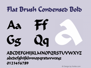 Flat Brush Condensed