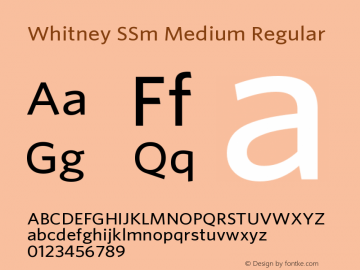 Whitney SSm Medium