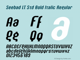 Seebad LT Std Bold Italic