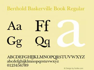 Berthold Baskerville Book
