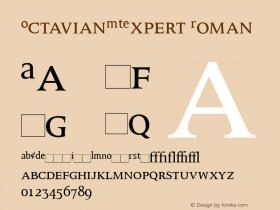 OctavianMTExpert