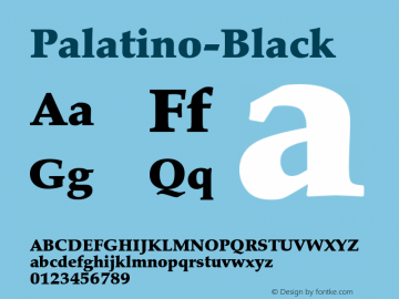 Palatino-Black