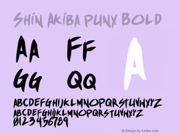 Shin Akiba punx