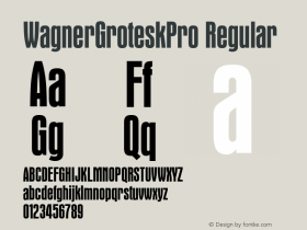 WagnerGroteskPro