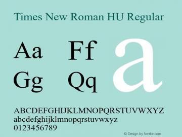 Times New Roman HU