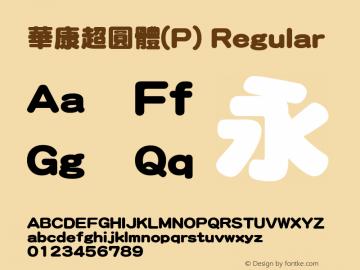 華康超圓體(P)