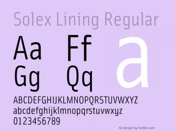 Solex Lining