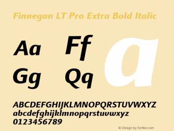 Finnegan LT Pro