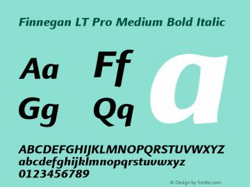 Finnegan LT Pro Medium