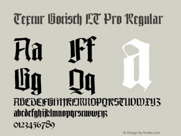 Textur Gotisch LT Pro