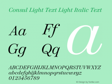 Consul Light Text