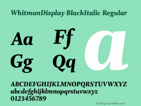 WhitmanDisplay BlackItalic