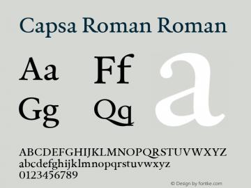 Capsa Roman