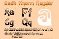 Badh ttnorm