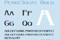 PeakeSquat
