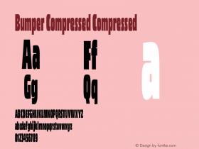 Bumper Compressed