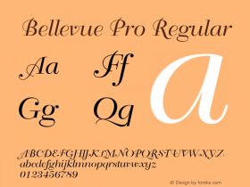 Bellevue Pro