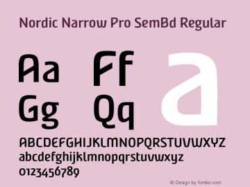 Nordic Narrow Pro SemBd