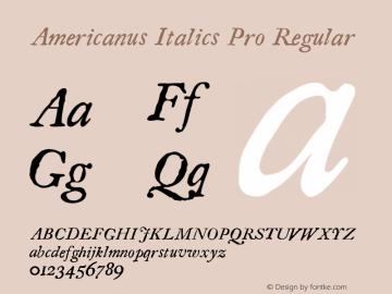 Americanus Italics Pro