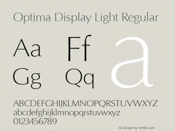 Optima Display Light