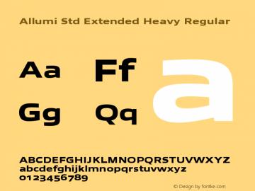 Allumi Std Extended Heavy