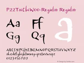 P22TaiChi-Regular