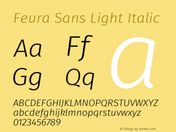 Feura Sans Light