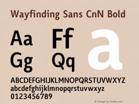Wayfinding Sans CnN