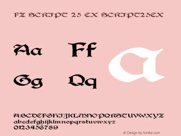 FZ SCRIPT 25 EX