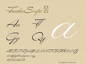 FeatherScript