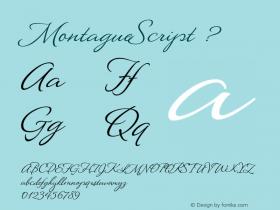 MontagueScript