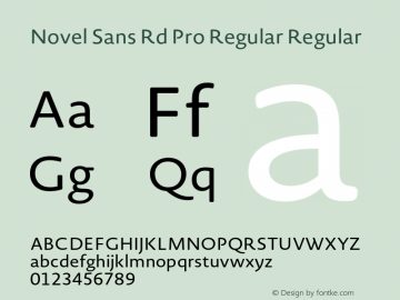 Novel Sans Rd Pro Regular