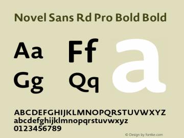 Novel Sans Rd Pro Bold
