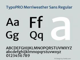 TypoPRO Merriweather Sans